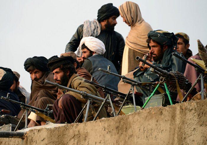 کشته شدن ۷ عضو طالبان در ولایت ننگرهار