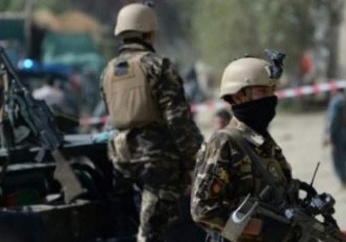 بازداشت سه عامل ترور قوای امنیتی در هرات