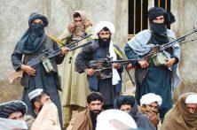 طالبان درخواست حکومت افغانستان برای توقف جنگ را رد کردند