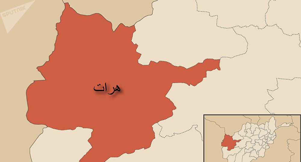 انفجار ماین چسپکی در غزنی جان یک سرباز را گرفت