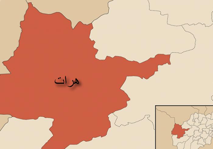 عاملان سرقت ۲۴ میلیون افغانی از بانک اسلامی در هرات بازداشت شدند