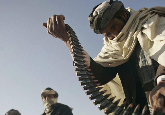 حمله طالبان به خانه ولسوال «برکی برک» لوگر دو کشته برجای گذاشت