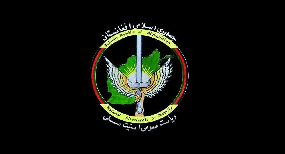 یکی از اعضای ارشد القاعده در افغانستان دستگیر شد