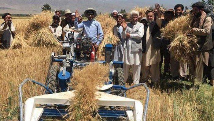 وزارت زراعت برای ۱۴ هزار دهقان بیش از یک میلیارد افغانی قرضه میدهد