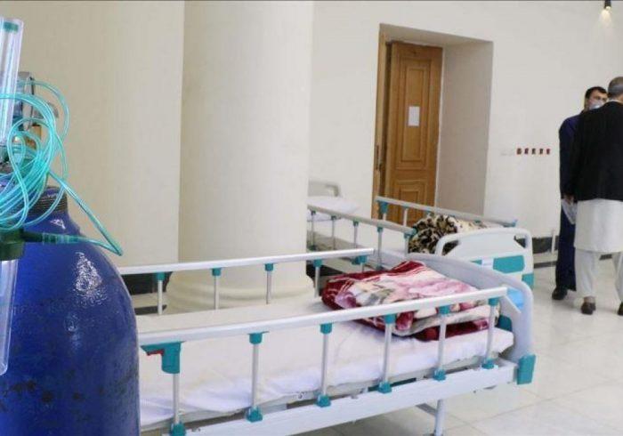 جان باختن ۱۰۱ نفر بیمار کرونایی در یک شبانهروز گذشته