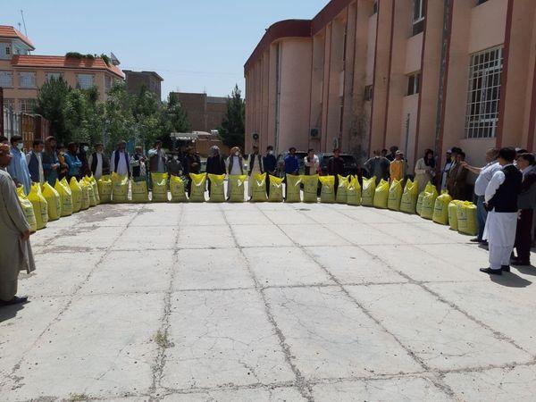 به یک هزار زن در هرات، ۵۰هزار مرغ تخمی توزیع میشود