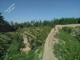 حمله طالبان در ولسوالی گذرهی هرات عقب زده شد
