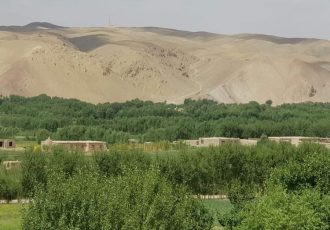 نیروهای امنیتی و خیزشهای مردمی حمله تهاجمی طالبان را در ولسوالی دولتیار غور عقب زدند