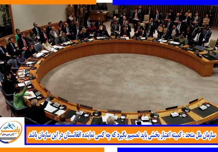 سازمان ملل متحد : کمیته اعتبار بخشی باید تصمیم بگیرد که چه کسی نماینده افغانستان در این سازمان باشد