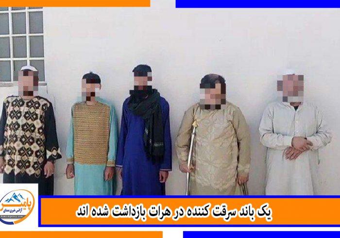 یک باند سرقت کننده در هرات بازداشت شده اند